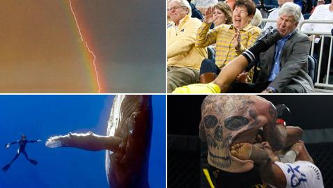 إليكم 10 صور التقطت في توقيت مثالي مع قصة كل واحدة منها!
