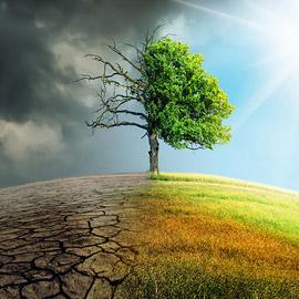 تغير المناخ.. أكبر المخاطر التي تهدد الطبيعة!