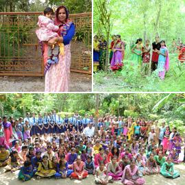 تعرفوا على القرية الهندية التي يزرع سكانها 111 شجرة مع مولد كل فتاة