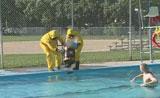 هروب غير متوقع من السباحة بسبب المواد السامة