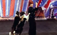 دونيلدا وكلباها الموهوبان